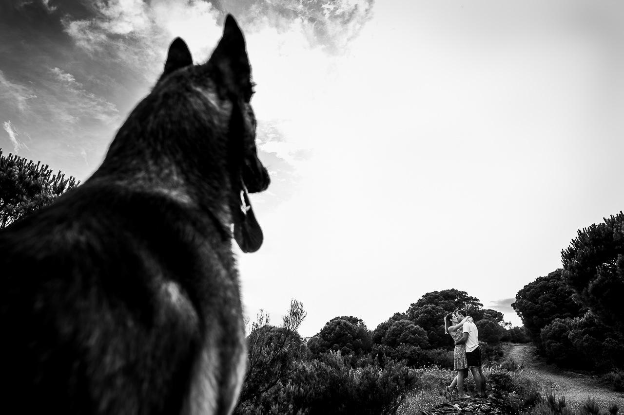 Photo originale de couple avec leur chien sur les côtes des pyrénées orientales dans le 66